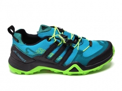Adidas Terrex SwiftR GTX Blue/Black/Green B66
