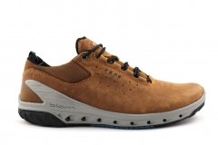 Ecco Biom Venture Brown