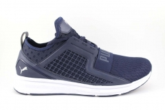 Puma Ignite Limitless Navy/White